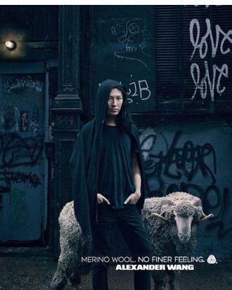 Alexander Wang and sheep.