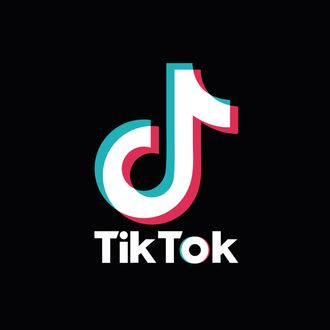 TikTok Glitch Mistaken for a Ban in the United States