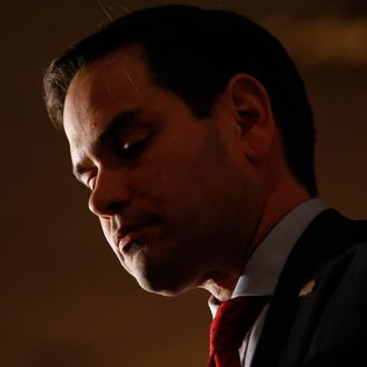 Republican presidential candidate Marco Rubio in Michigan