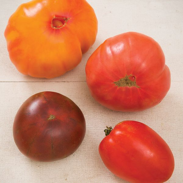 Johnny's Seeds Heirloom Tomato Collection Organic Tomato Seed
