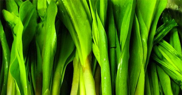 Where the Ramps Are: Restaurants Serving Spring Vegetables Right Now