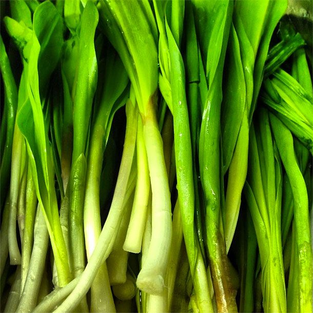 Ramps! Who run the world!