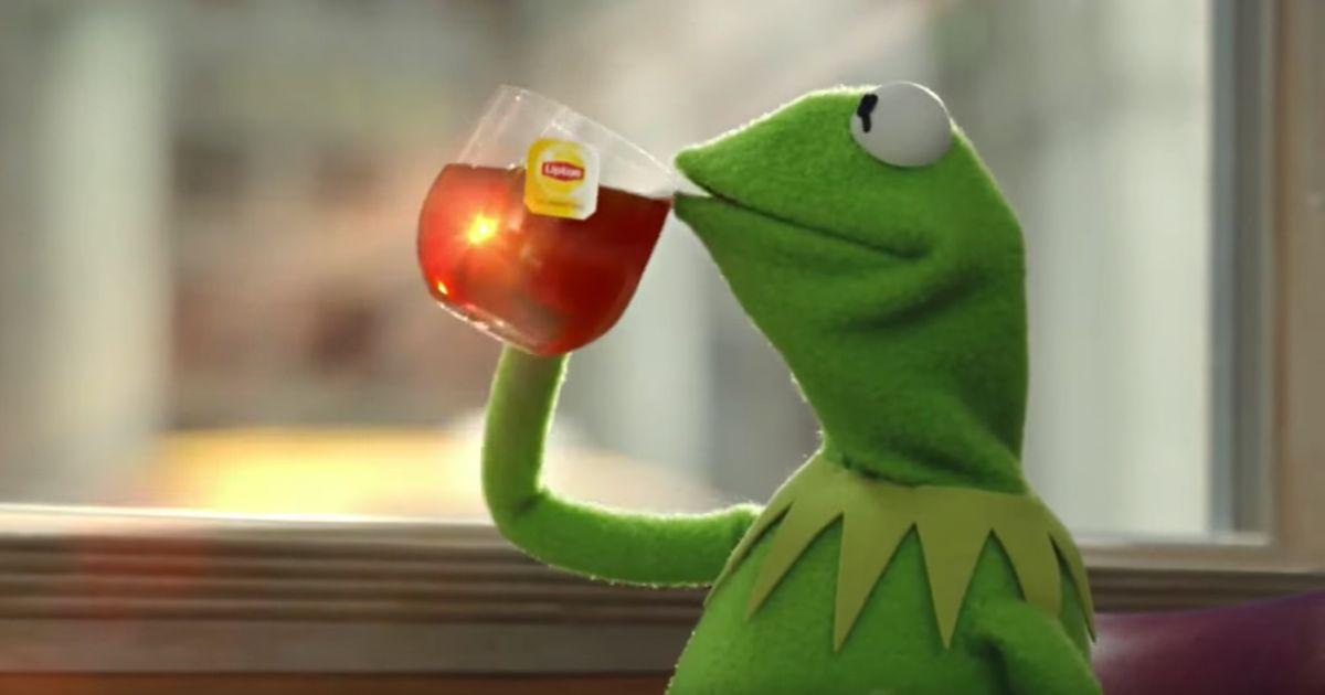 The Reason GMA's Tea Lizard Tweet Was Problematic