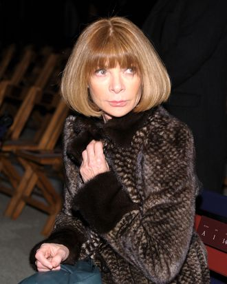 NEW YORK, NY - FEBRUARY 12: Anna Wintour attends the Tommy Hilfiger Fall 2012 fashion show during Mercedes-Benz Fashion Week at Park Avenue Armory on February 12, 2012 in New York City. (Photo by Michael Loccisano/Getty Images for Mercedes-Benz Fashion Week)