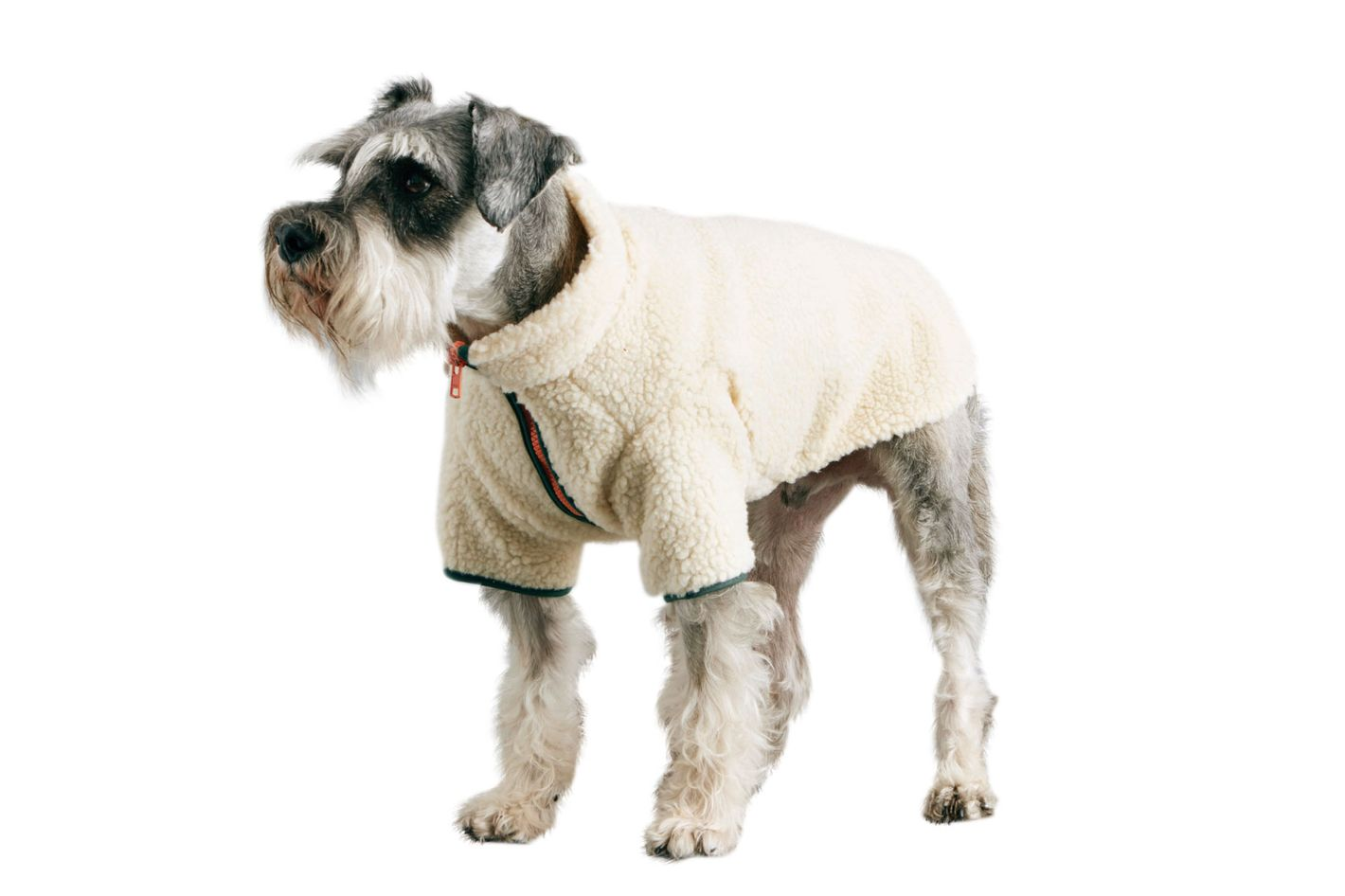 Sherpa Dog Fleece Jacket