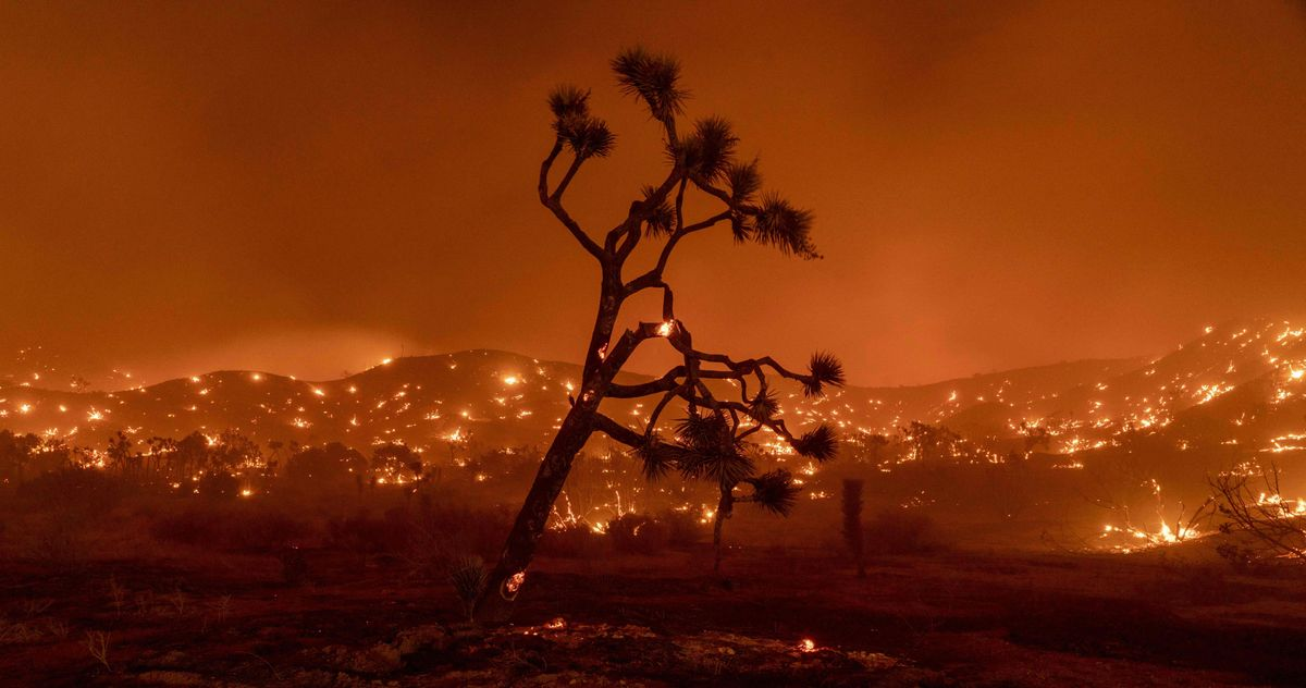 California's Last Fire Season Was a Historic Disaster. This One Could Be Worse.