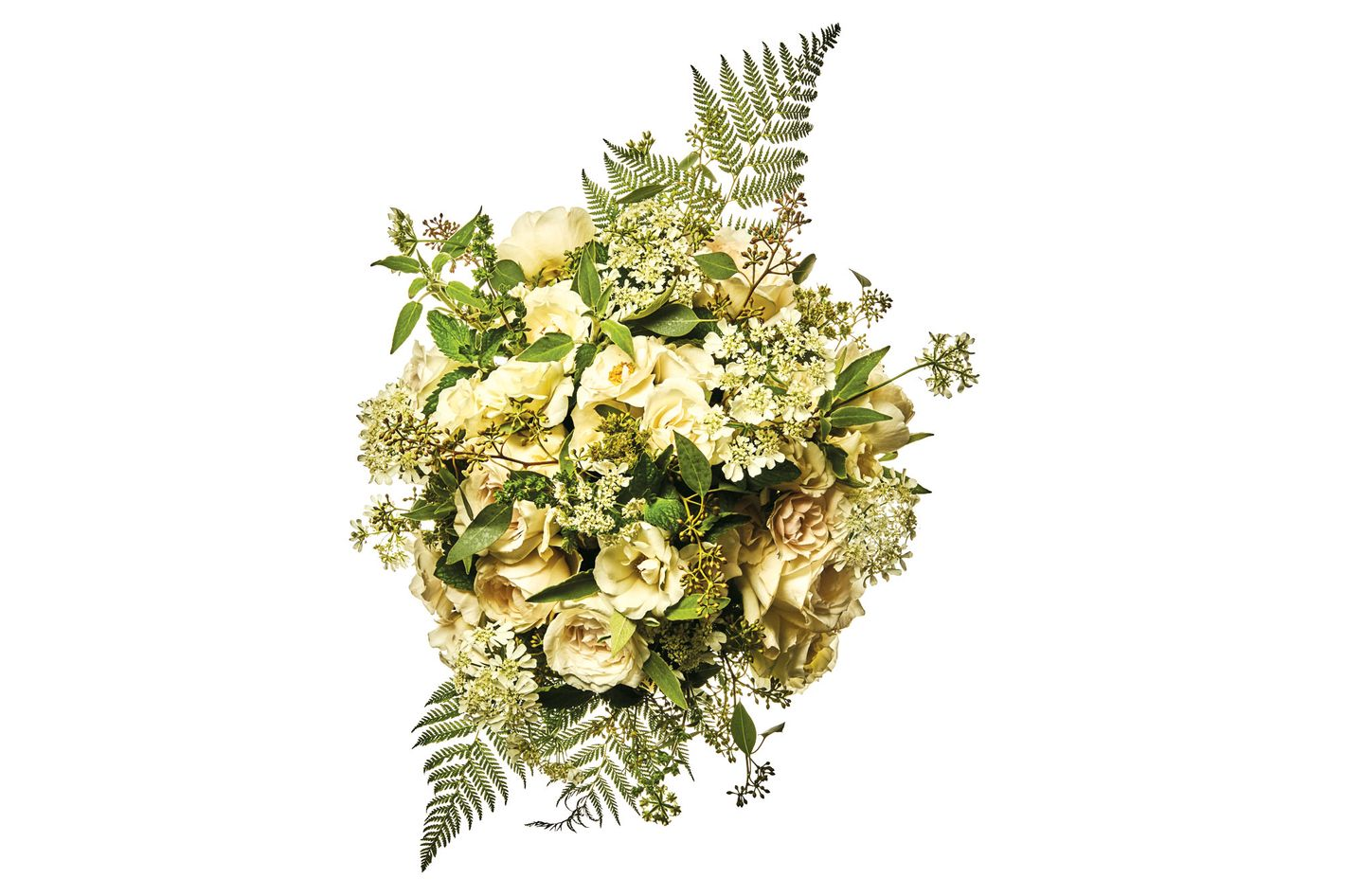Majolica spray rose, Lichfield Angel garden rose, local Queen Anne's lace, flowering oregano, sage, mint, and forest fern