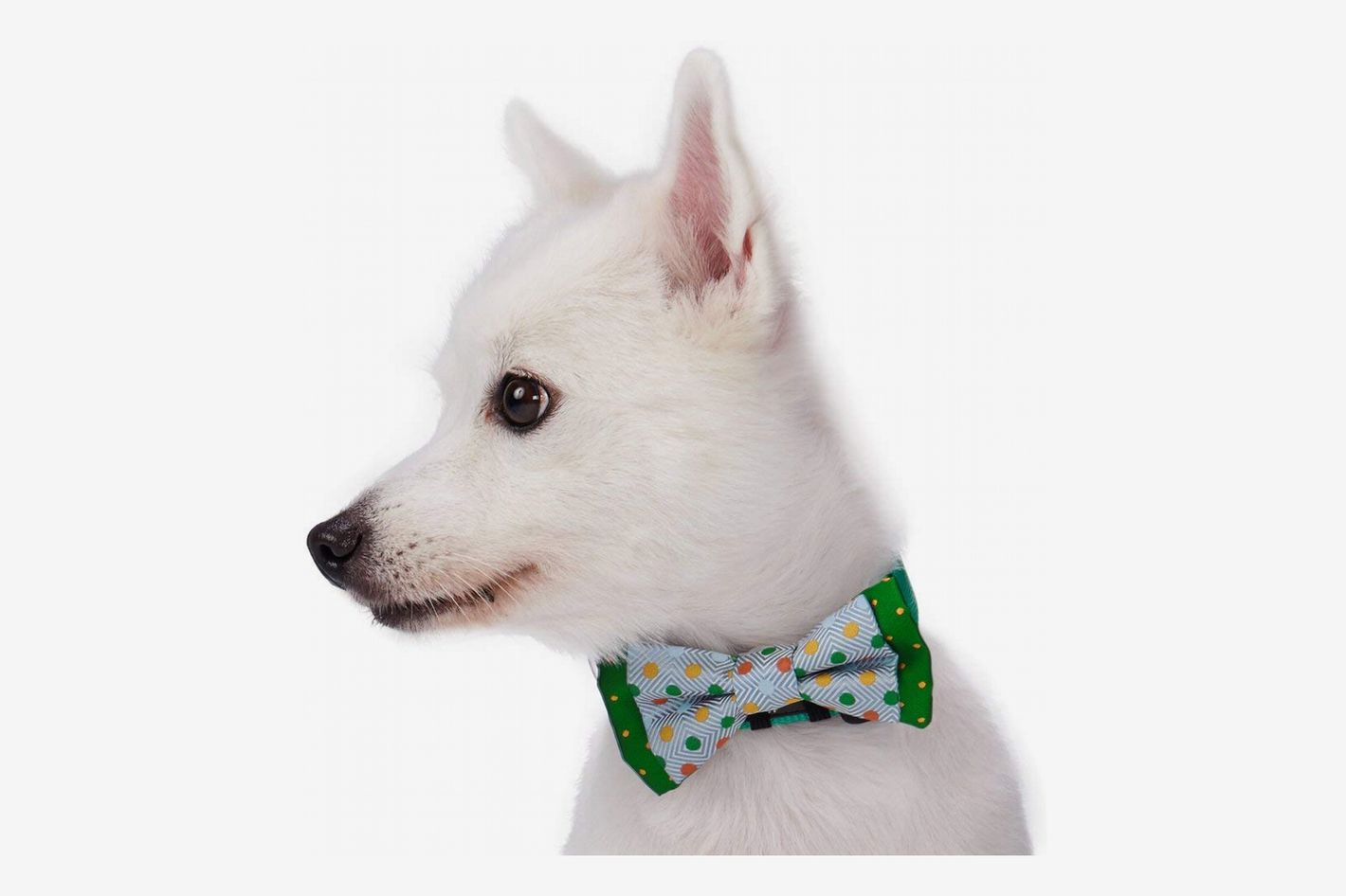 Blueberry Pet Bow Ties