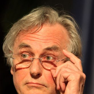 ANTWERP, BELGIUM - APRIL 29: British author Richard Dawkins attends his Honourary Doctorate ceremony at the Antwerp University on April 29, 2009 in Antwerp, Belgium. (Photo by Mark Renders/Getty Images) *** Local Caption *** Richard Dawkins