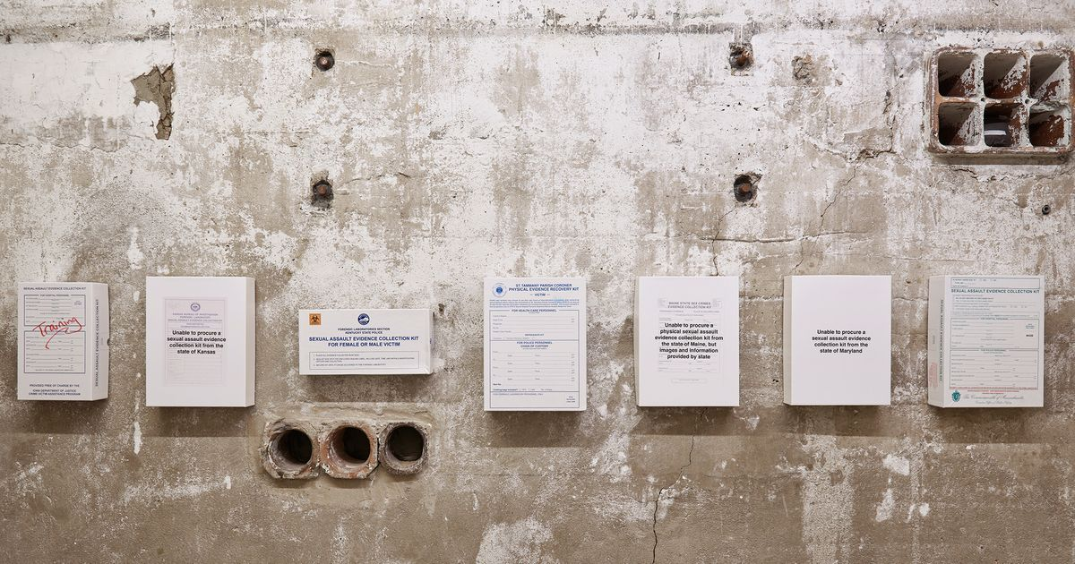 The Artist Making Installations Out of Rape Kits