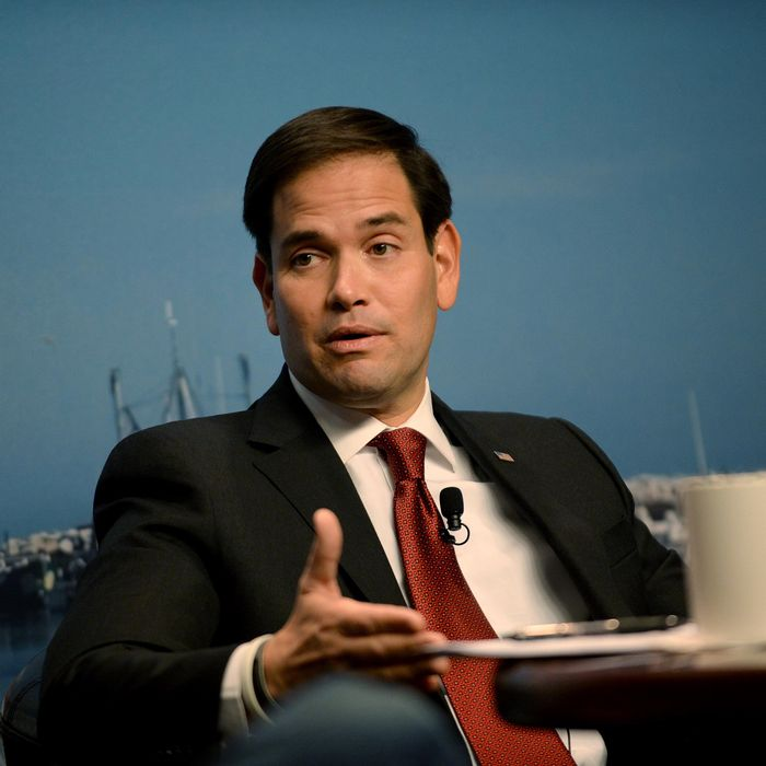 Republican Presidential Candidate Sen. Marco Rubio Campaigns In New Hampshire