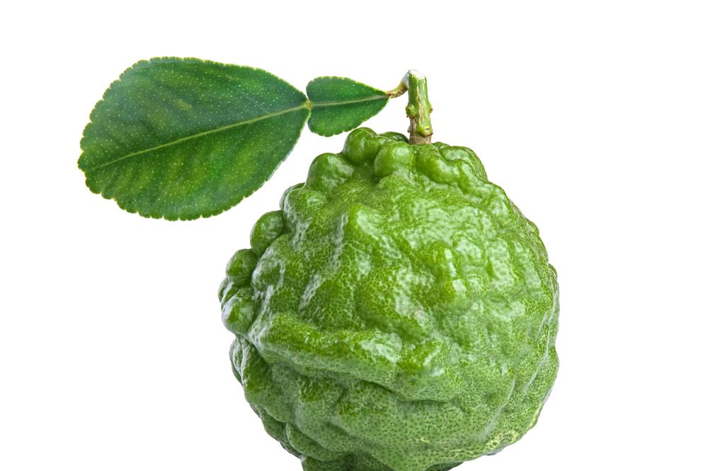 We have met the enemy and it is this lime's name.