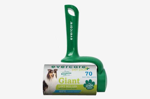 Phenomenal 25 Best Pet Safe Cleaning Products For Pet Messes The Ibusinesslaw Wood Chair Design Ideas Ibusinesslaworg