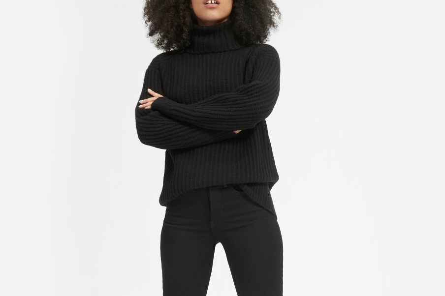 Everlane Italian Soft-Wool Rib Turtleneck