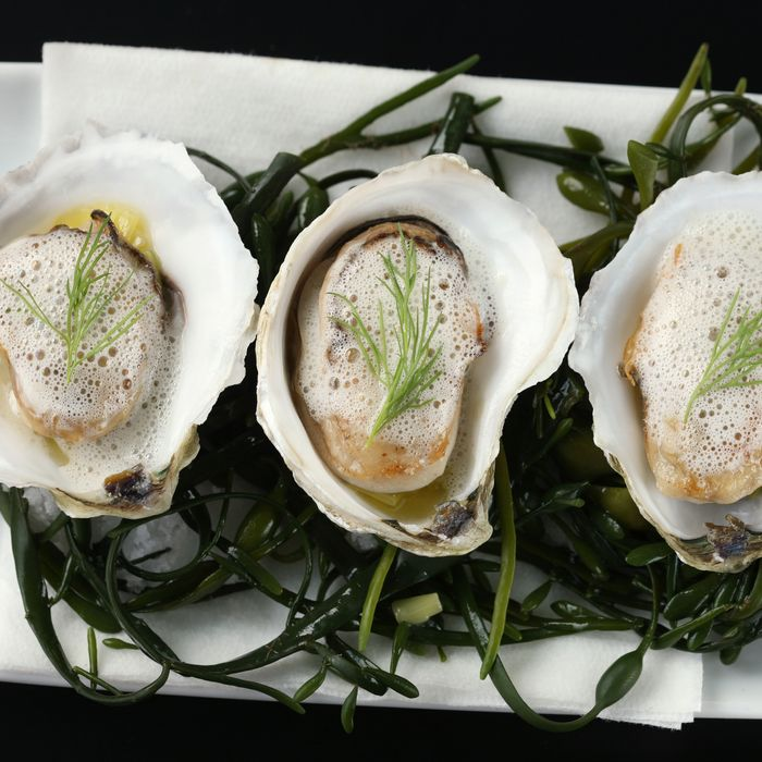 Roasted oysters with pear-parsnip veloute.