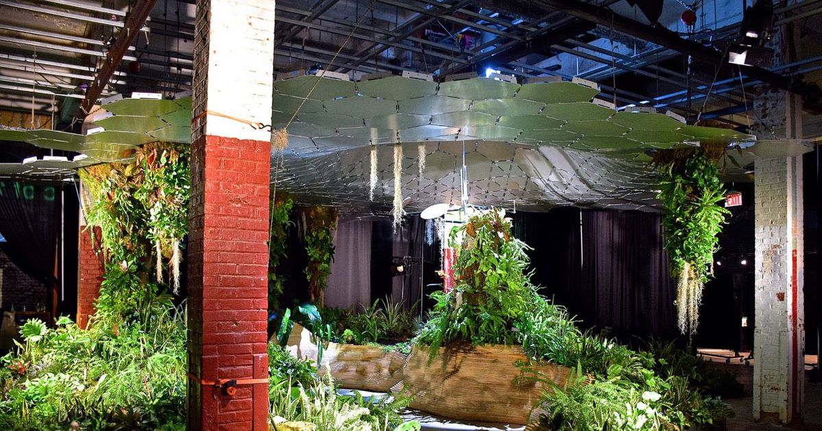 The Lowline Just Got a Thumbs-up From City Hall