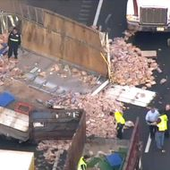 So, a Truck Hauling Deli Meat Crashed Into a Truck Full of Bread