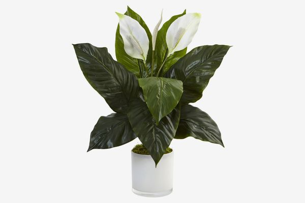 Nearly Natural Peace Lily Artificial Flower with Glossy Glass Planter