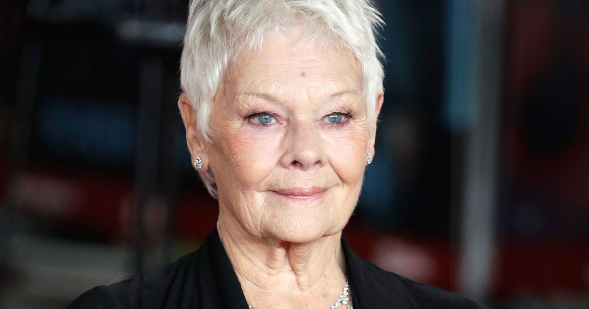 Judy Dench Will Play a Fairy Police Officer in Artemis Fowl