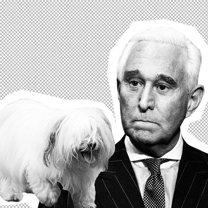 L: Bianca the dog, R: Roger Stone.
