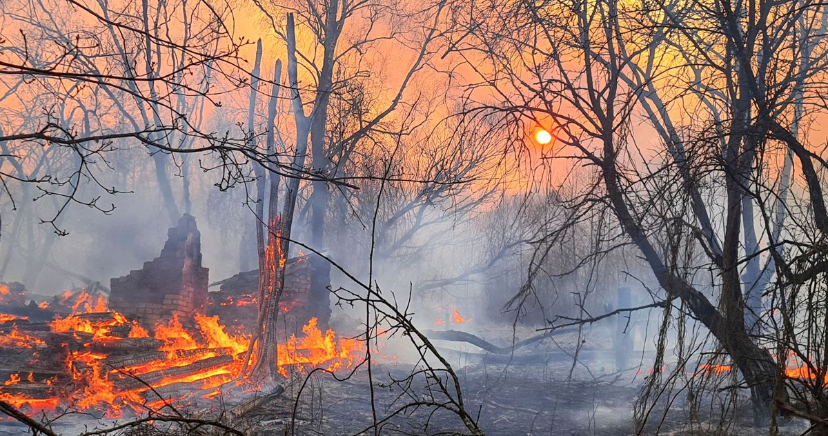 Meanwhile, There's a Huge Forest Fire Near Chernobyl