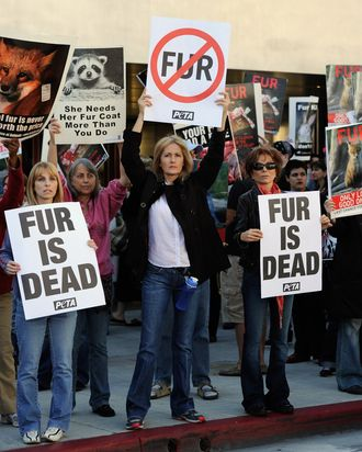 Fur protesters in Beverly Hills.
