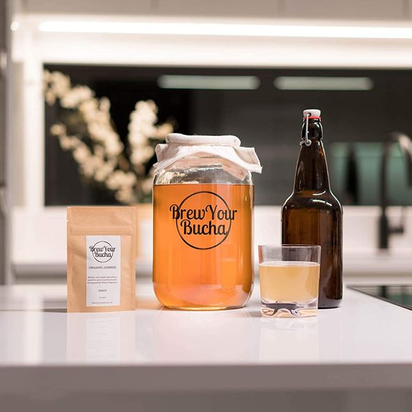 Brew Your Bucha: Kombucha Tea SCOBY