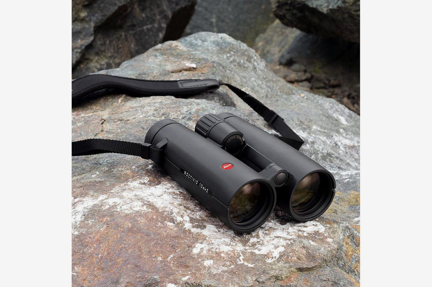 11 Best Binoculars for Birdwatching, Stars, and More 2018