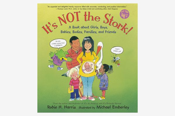 It's Not the Stork!: A Book About Girls, Boys, Babies, Bodies, Families, and Friends