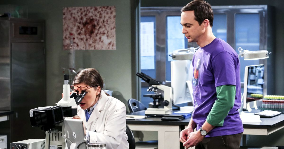 Should The Big Bang Theory's Sheldon and Amy Win a Nobel? 7 Physics Laureates Weigh In