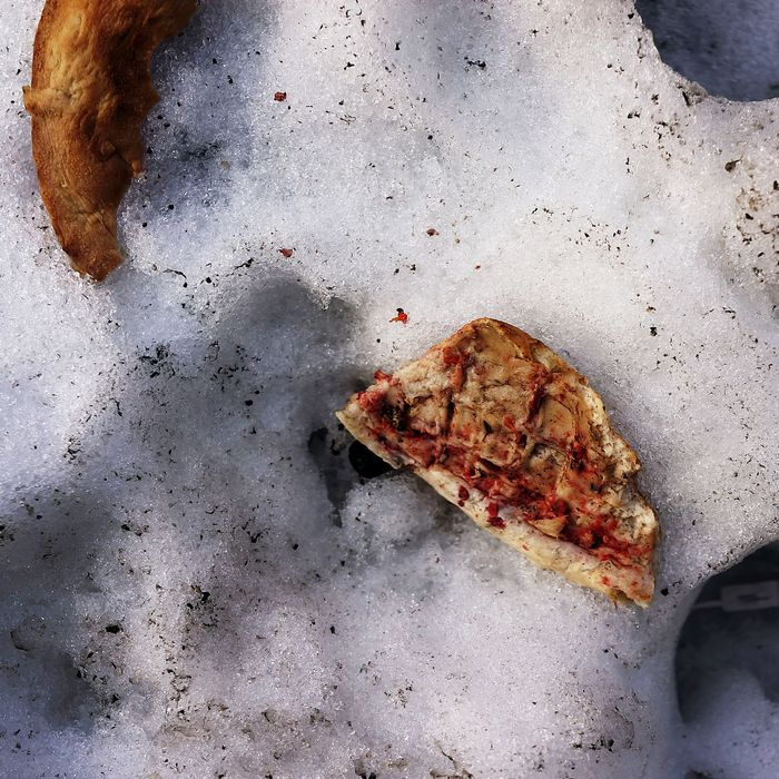 NEW YORK, NY - FEBRUARY 20: A slice of pizza is viewed on top of a melting mound of snow as temperatures in New York City reach into the mid 40's revealing trash that's been buried for weeks on February 20, 2014 in New York City. After weeks of bitter cold weather and heavy snow, New York and much of the Northeast got a break from winter with sun and warming temperatures. The forecast calls for temperatures to remain warm through the weekend before falling back down next week. (Photo by Spencer Platt/Getty Images)