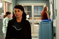 Grey's Anatomy Recap: Spirals and Stilettos