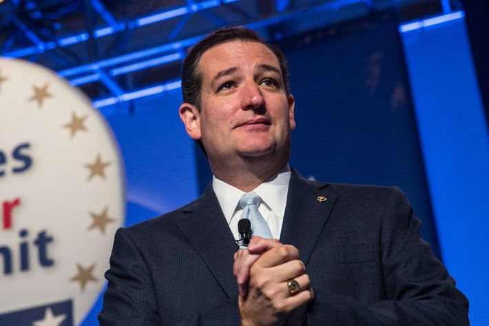 WASHINGTON, DC - OCTOBER 11:  Senator Ted Cruz (R-TX), speaks at the 2013 Values Voter Summit, held by the Family Research Council, on October 11, 2013 in Washington, DC. The summit, which goes for three days, is attended by a number of Republican senators and high profile conservative voices in American politics.  (Photo by Andrew Burton/Getty Images)