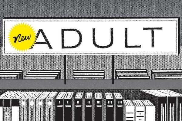 gênero literário, New Adult, características, sorteio, livro