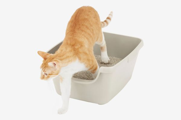 Frisco High-Sided Cat Litter Box