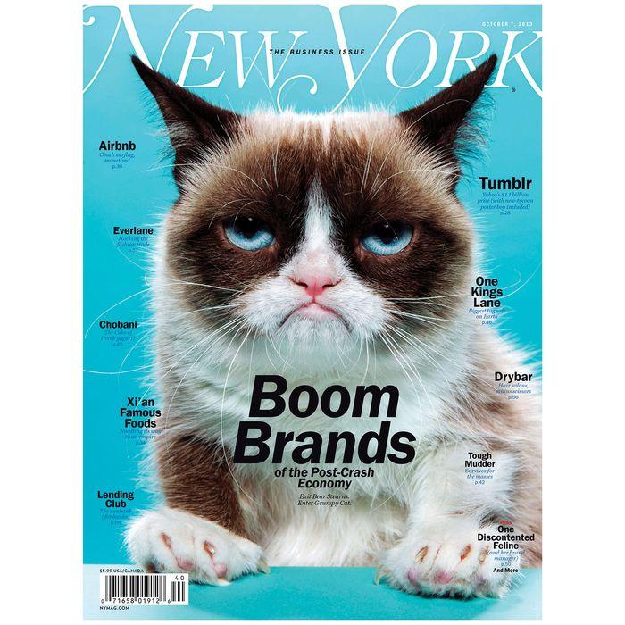 Grumpy Cat tabatha bundesen