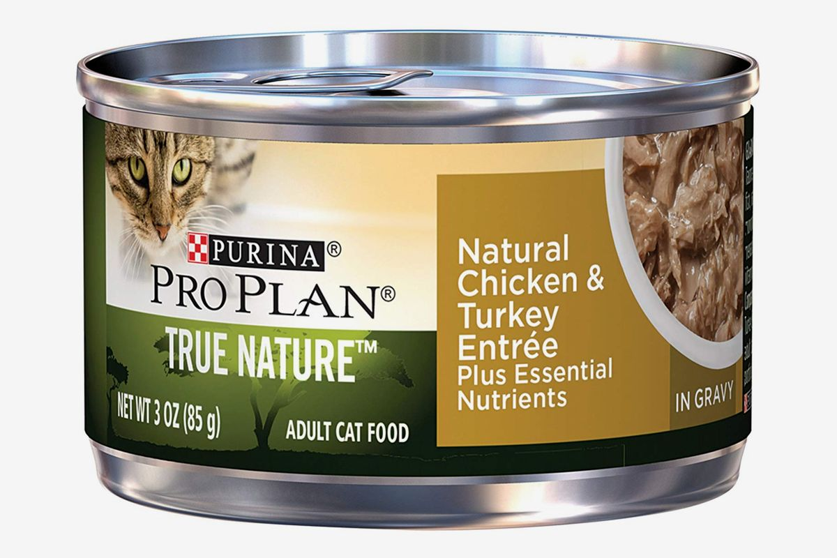 8 Best Cat Foods 2019 The Strategist New York Magazine,Coin Dealers Near Me Open