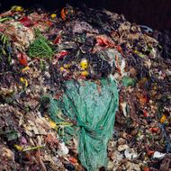 A Revolutionary Food-Waste Recycling Plant Is Opening in Long Island