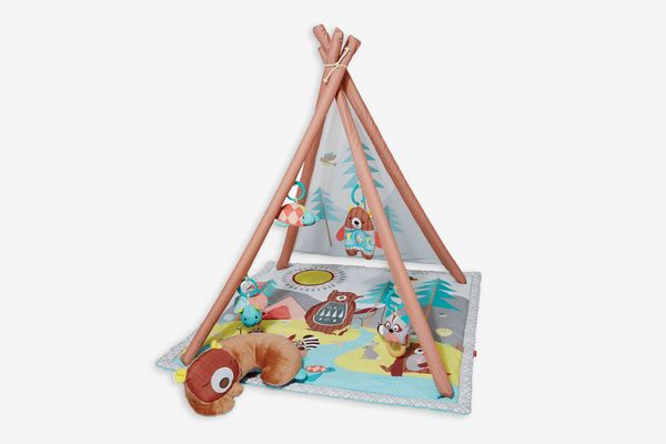 Skip Hop Baby Infant and Toddler Camping Cubs Activity Gym