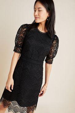 Shoshanna Lucy Lace Mini Dress