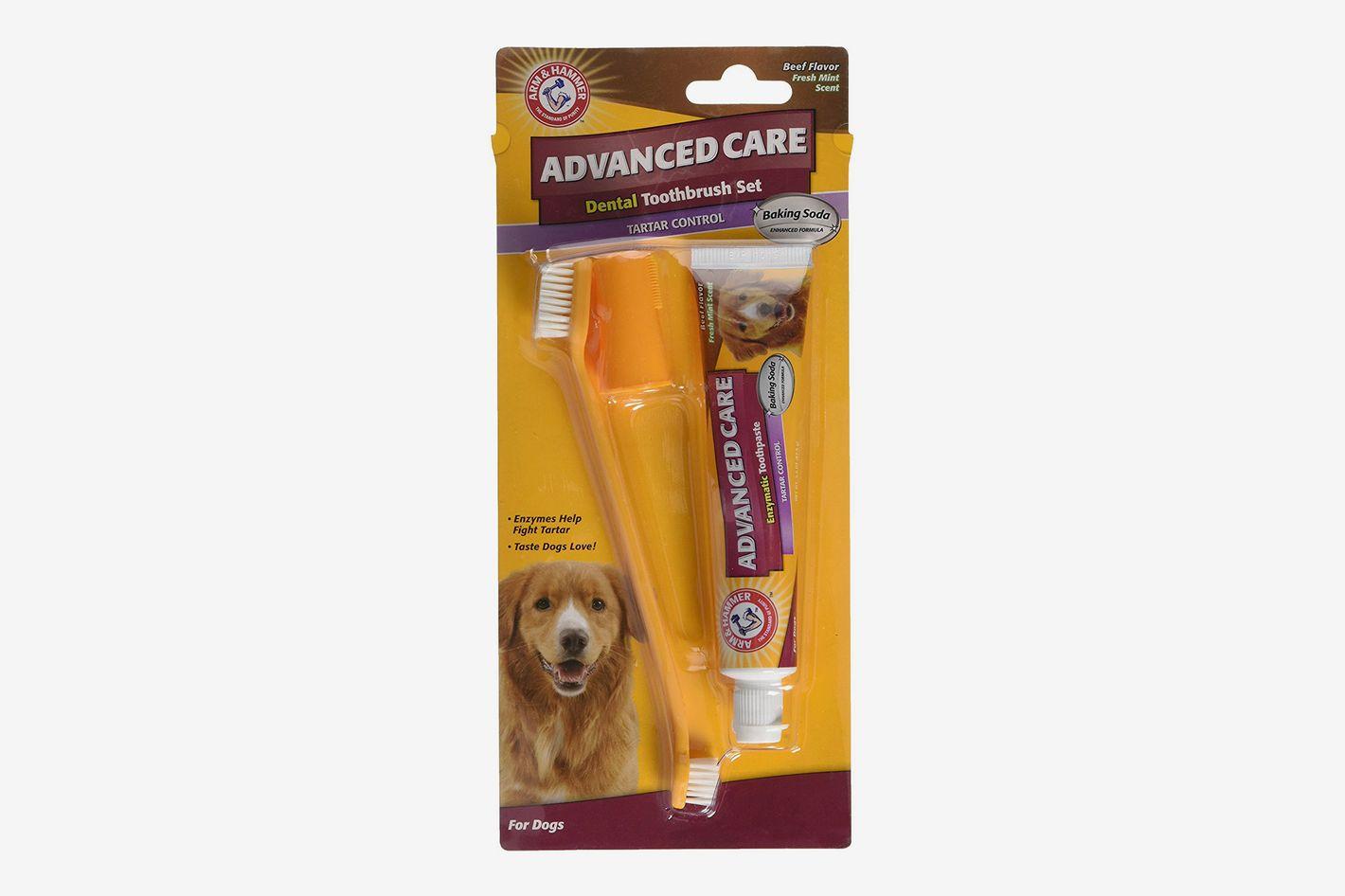 Arm & Hammer Dog Dental Care