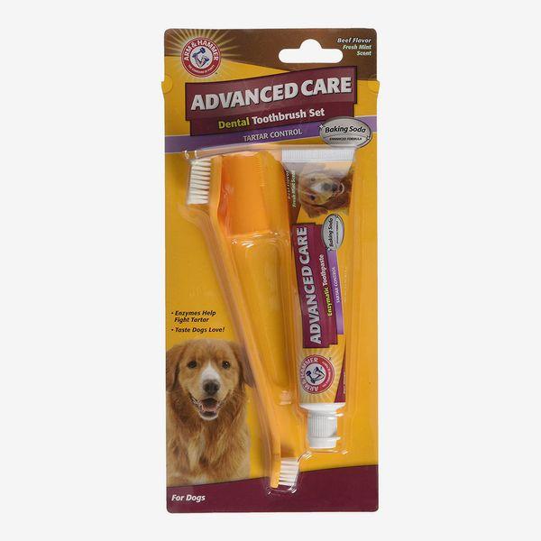 Soins dentaires pour chien Arm & Hammer