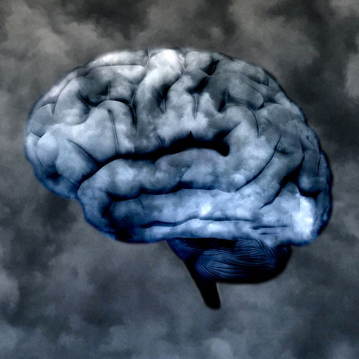 Study Wandering Pervasive Problem For >> Why Your Mind Is Always Wandering Science Of Us