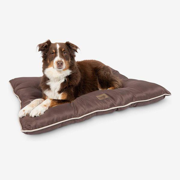 Pet Craft Supply Super Snoozer Calming Indoor / Outdoor Dog Bed