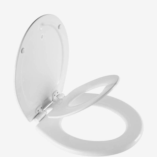 MAYFAIR NextStep2 Toilet Seat with Built-In Potty Training Seat