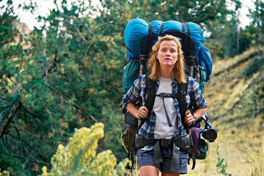 Talking To Cheryl Strayed About Why Wild Works Vulture