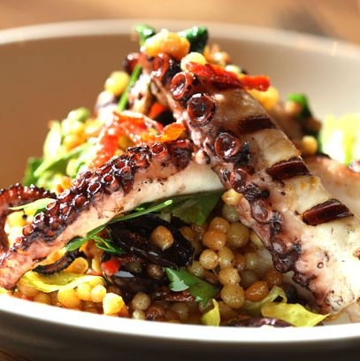 The octopus at L'Apicio, a dish that Wells liked.