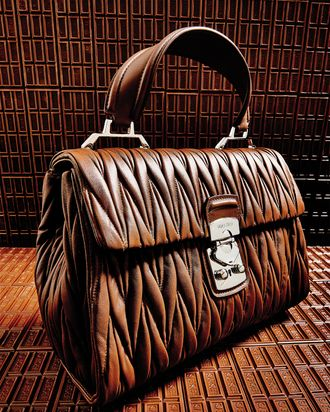 A bag from Miu Miu's spring collection.