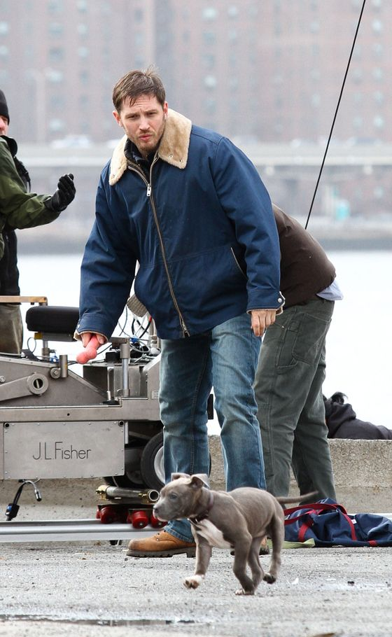 Tom Hardy spotted shooting scenes with a cute puppy for his upcoming movie 'Animal Rescue' in Brooklyn, NYC. <P> Pictured: Tom Hardy <P><B>Ref: SPL509299  110313  </B><BR/> Picture by: Splash News<BR/> </P><P> <B>Splash News and Pictures</B><BR/> Los Angeles:	310-821-2666<BR/> New York:	212-619-2666<BR/> London:	870-934-2666<BR/> photodesk@splashnews.com<BR/> </P>