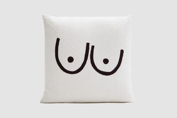 Cold Picnic Private Parts Pillow